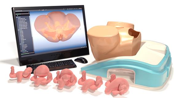 Becken untersuchung mit Simulation üben, dem Pelvic Mentor