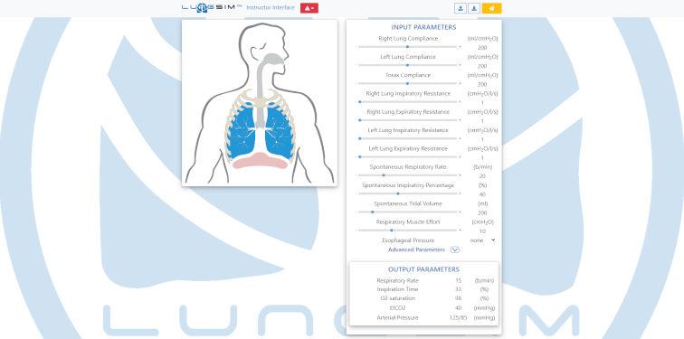 Interface des Instruktors bei der Simulation mechanischer Beatmung am Patientensimulator und LungSim